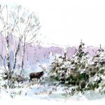 Cerf en hiver - Feutre et aquarelle