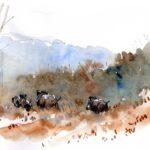 Sangliers - Feutre et aquarelle