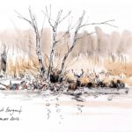 Etang de Bourgneuf - Feutre et aquarelle