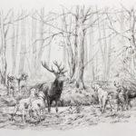 Eq. de la Futaie des Amis - Crayon - 20x30 - D3852
