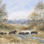 Sangliers en queue d'étang - Gouache - 20x30 - G7306
