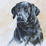 Labrador - Aquarelle - 26x20 - A0107