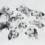 Meute - Crayon graphite - 40x55 - D9064
