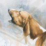 Abois - Aquarelle - 20x30 - A6804