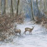 Chevreuils dans la neige - Gouache - 20x30 - a4381