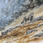 Le loup en montagne - Gouache - 20x30 - G4440