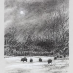 Sangliers au clair de lune - Fusain - 36x26 - D3224