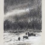 Sangliers au clair de lune - Fusain - 36x26 - D3226