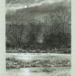 Canards au clair de lune - Fusain - 36x26 - D4191
