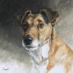 Fox terrier - Gouache - 38x38 - G3928