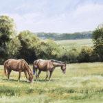 Deux chevaux - Aquarelle - 27x37 - A3932