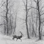 Cerf dans la neige - Fusain - 39x29 - D9617