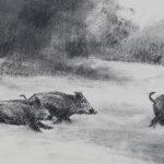 Sangliers dans la neige - Fusain - 15x42 - D9850