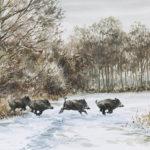 Sangliers dans la neige - Aquarelle - 20x30 - A6767