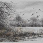 Pose de canards - Fusain et pastel - 40x60 - D0335