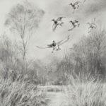 Pose de canards - Fusain - 31x21 - D9108