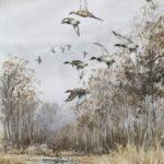 Vol de colverts - Aquarelle - 30x20 - A0259