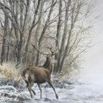 Cerf dans la neige - Gouache - 37x27 - G2685