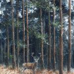 Dix cors dans les pins - Gouache - 30x20 - G8625