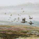 Vol de grouses - Aquarelle - 20x30 - A7866