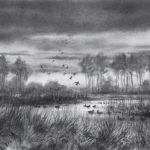 Pose de canards - Fusain - 28x38 - D9206