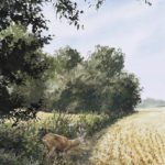 Le chevreuil en lisière - Gouache - 30x20 - G0485
