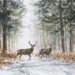 Deux cerfs - Aquarelle - 20x30 - A2301