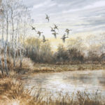 Canards au couchant - Gouache - 27x37 - G2372