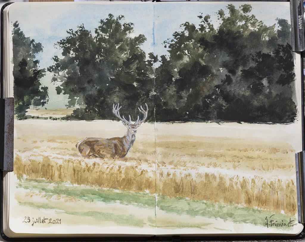 Dans les champs - Aquarelle - C4759